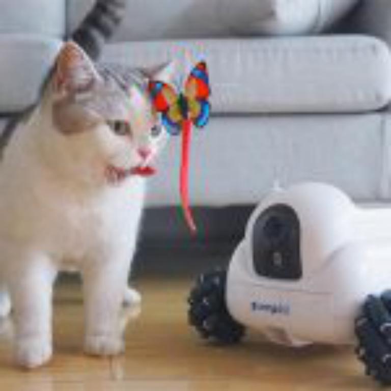 دستگاهی برای مراقبت و نگهداری از حیوان خانگی