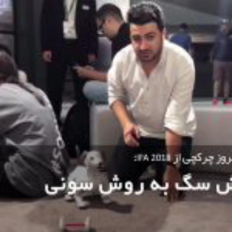 پرورش سگ به سبک سونی، روباتی که ممکنه جای سگتان را بگیرد